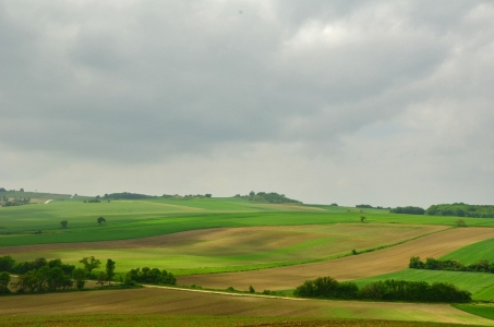 ernstbrunn-landschaft