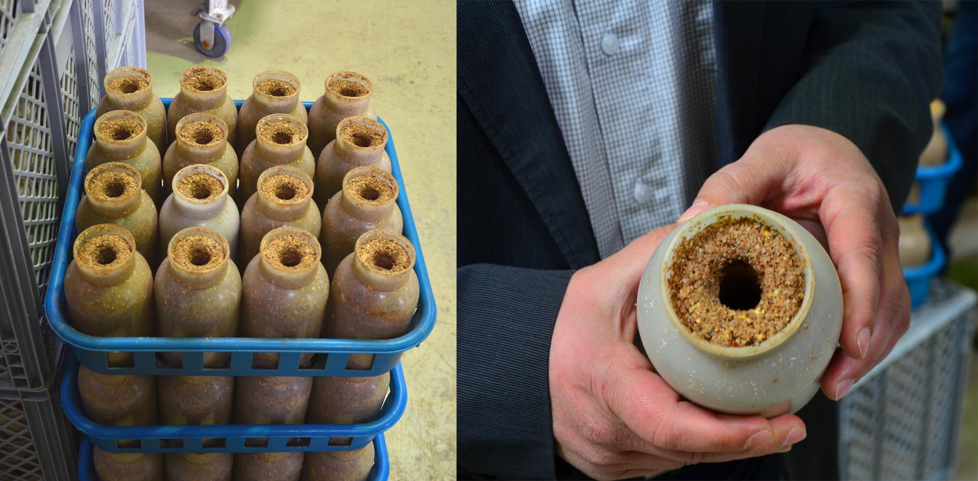 marchfelder-bio-edelpilze-flaschen