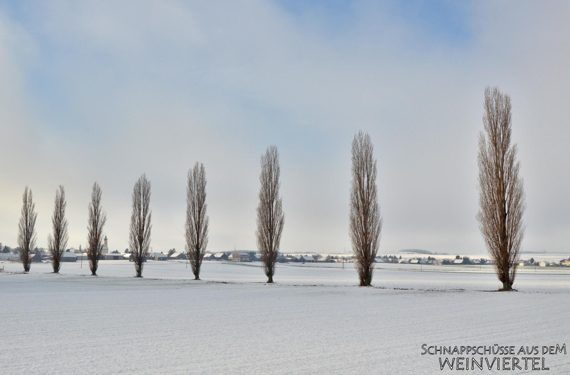 Ollersdorf im Winter